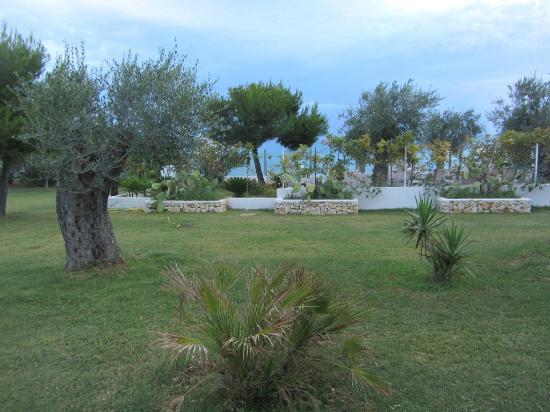 Cala Azzurra Vacanze: interno del villaggio