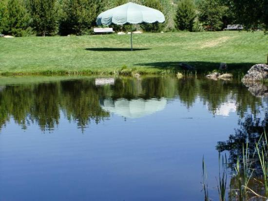 Yampa River Botanic Park: Peaceful pond