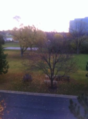 Hampton Inn Chicago/Westchester (Oak Brook) : view from room