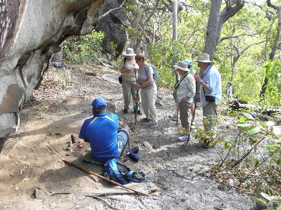 Guurrbi Tours: Willie's bush teachings