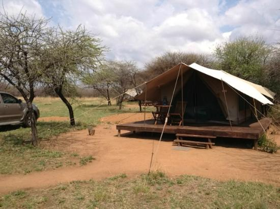 Selous Fly Fishing Lodge : Accommodation at Selous