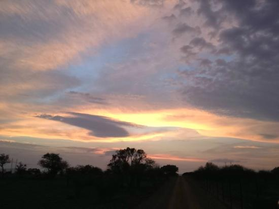 Selous Fly Fishing Lodge : Sunset on reserve