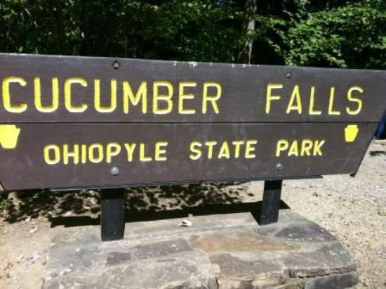 Ohiopyle State Park: Cucamber Falls