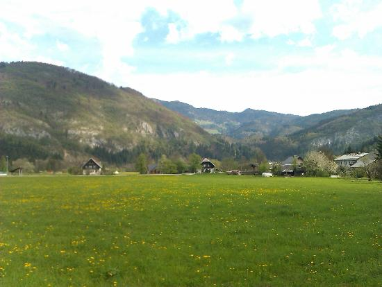 Bohinj ECO Hotel: Panorama attorno all' hotel