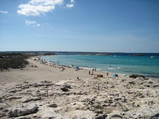 Strand Playa de ses Illetes: Lange Sandstrände - dazwischen Felsen