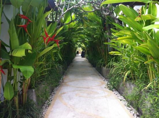 Ivory Resort Seminyak: 通路
