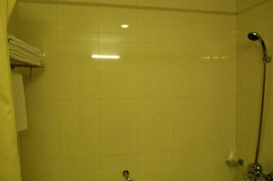 Flower Garden Hotel: ducha del baño