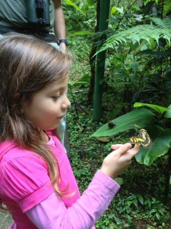 Rainforest Adventures: La mejor experiencia de mi hermanita Isa en el mariposario