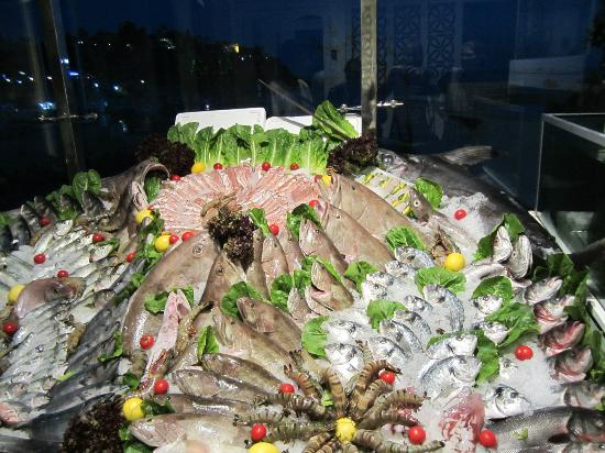 Arma Restaurant : Fish to choose from