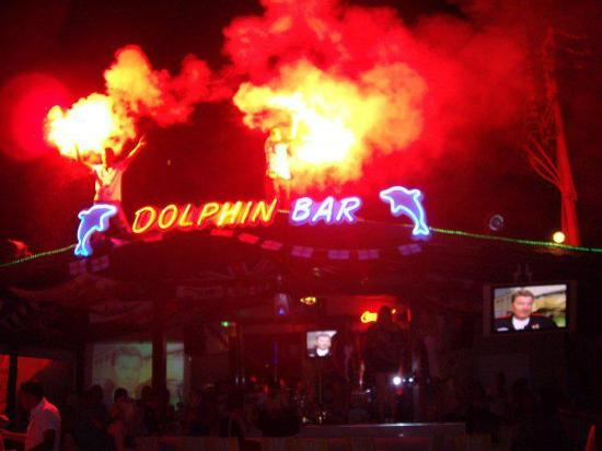 Dolphin Bar @ Siesta Beach Apartments