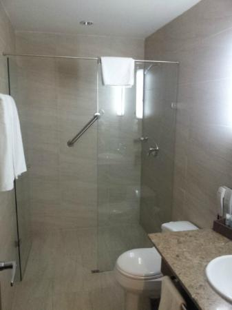 Hotel Poblado Alejandria: Modern and practical bathroom