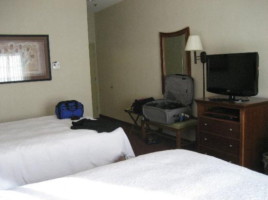 Hampton Inn Hadley-Amherst : Room