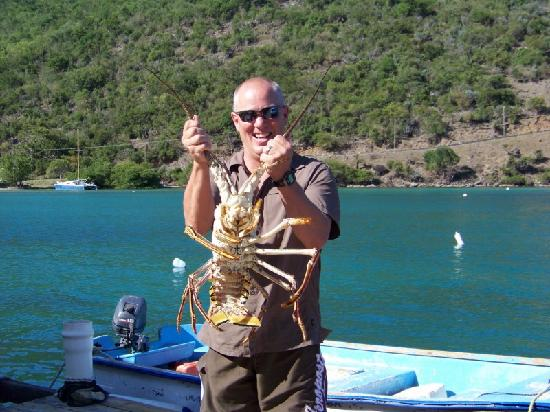 Sidney's Peace and Love : Rare opportunity to hold a Carribean Lobster
