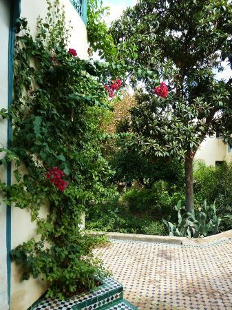 Fez Cafe at Le Jardin Des Biehn: 7