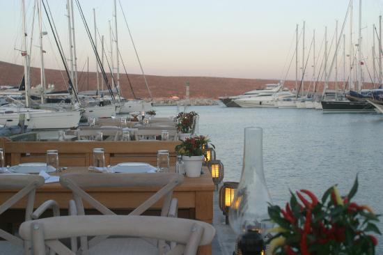 Kydonia Resturant