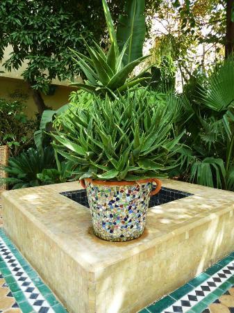 Fez Cafe at Le Jardin Des Biehn: 5