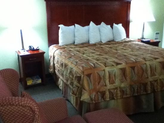 Alexis Inn & Suites Nashville Airport Opryland: big comfy bed with lots of pillows
