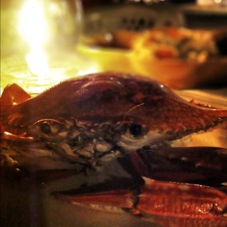 Nai Yang Seafood: BBQ crab with tasty sauce