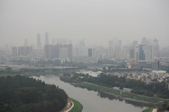 Best Western Shenzhen Felicity Hotel: View from the breakfast room
