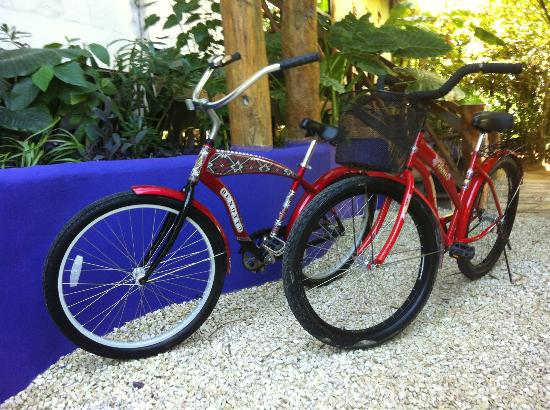 El Pez Colibri Boutique Hotel: Bike Rental