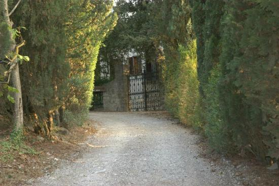 Villa  Vistarenni: the driveway and entrance
