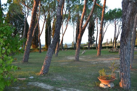 Agriturismo  Pieve Sprenna: Grounds