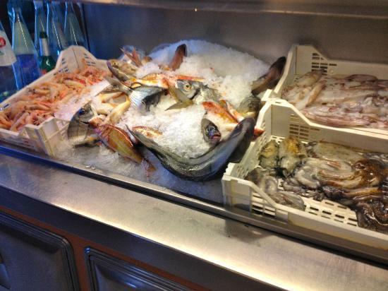 Trattoria Piccolo Napoli: Fish case