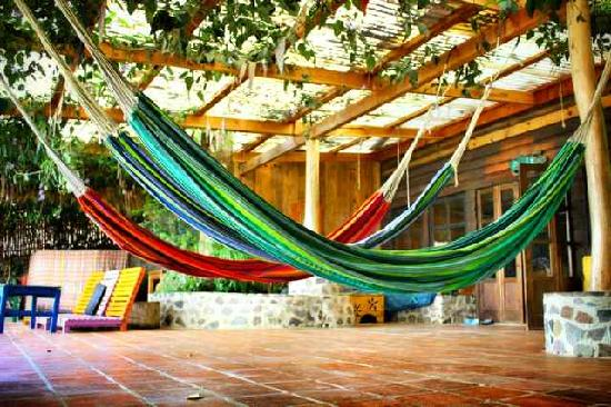 La Iguana Perdida Hotel: Chill Out In Our Hammocks On The Patio