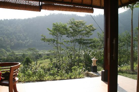 Arta Nadi Villa: vue depuis la chambre