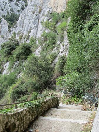 Pirenei orientali, Francia: Gorges de Galamus