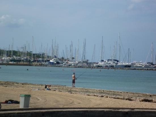 Palma-Bay Club Resort: Beach harbour