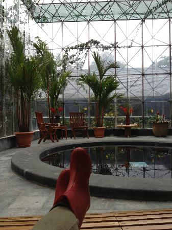 Monteverde Lodge & Gardens: Sauna/Hot tub area..Its nice to sit here too during the rain..