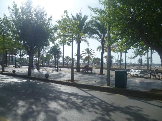 Palma Bay Club Resort: Beach area