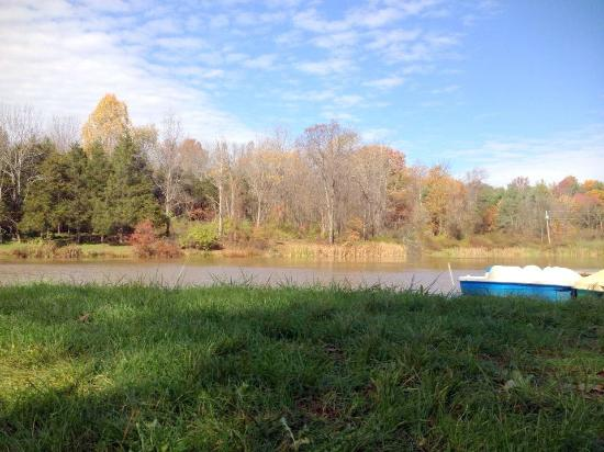 Pinegrove Family Dude Ranch: Views from the lake