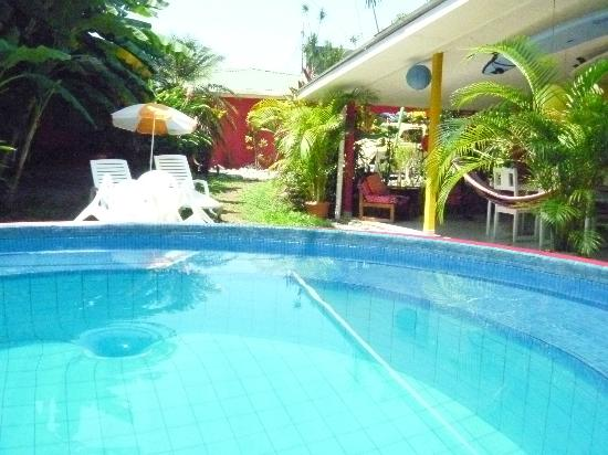Buddha House Boutique Hostel: The Pool