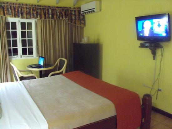Altamont Court Hotel Kingston: View of the room