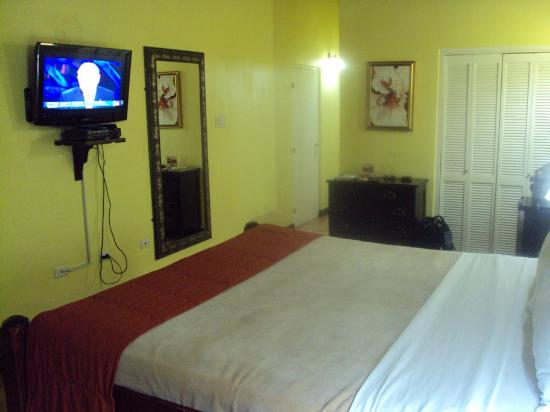 Altamont Court Hotel Kingston: View of the room facing the door