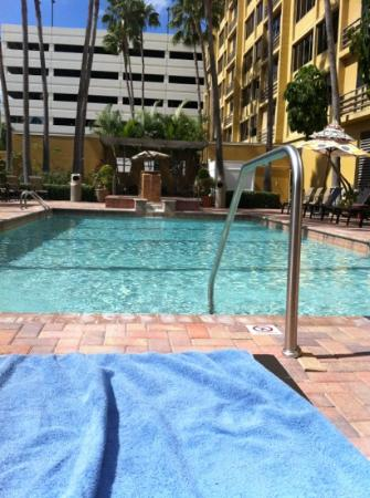 ‪‪Holiday Inn Tampa Westshore‬: gorgeous pool area‬