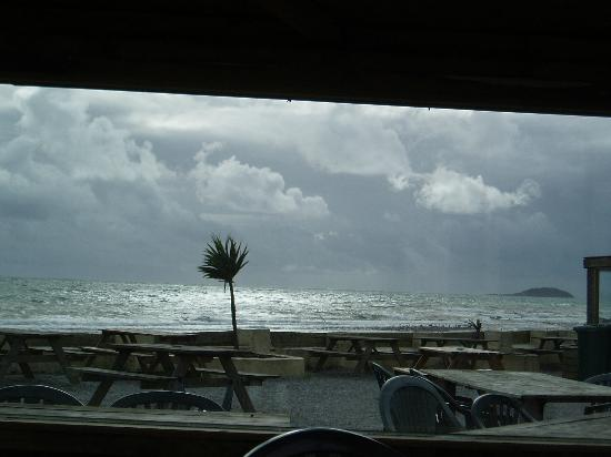 Seaton Beach Cafe: Taken from inside one of the seating bays