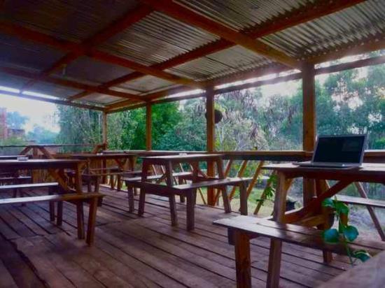 Pine Tree B & B: Outside dining