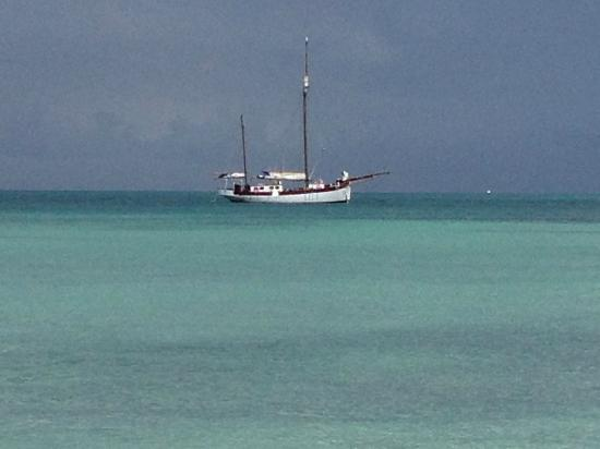 Hotel Riu Palace Aruba: gorgeous sea