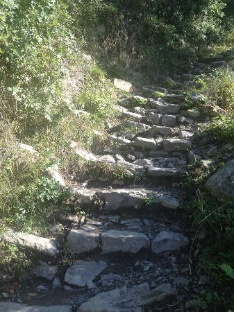 Trekguyd - Personal Guided Tours: some of the stairs on the trails