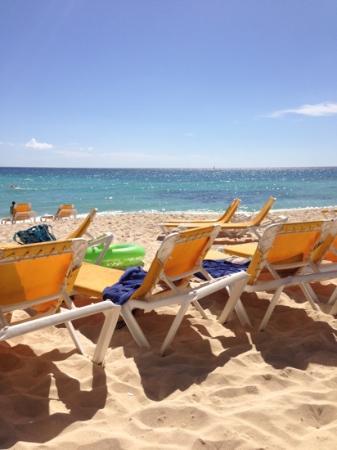 Viva Wyndham Dominicus Palace: plage