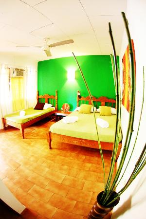 Buddha House Boutique Hostel Image