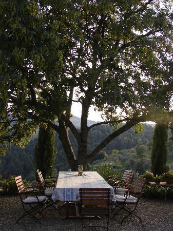 Ventena Vecchia - Antico Frantoio: Outdoor Common Area