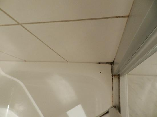 Seifert Hotel: eine der 4 dreckigen Schimmel-Duschecken
