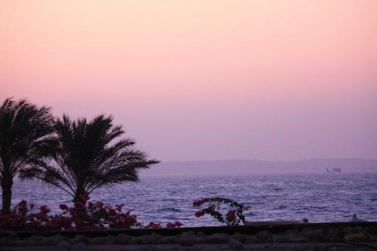 Radisson Blu Resort, Sharm El Sheikh : view from room