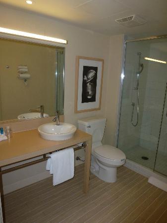 蒙特利爾機場諾富特飯店照片