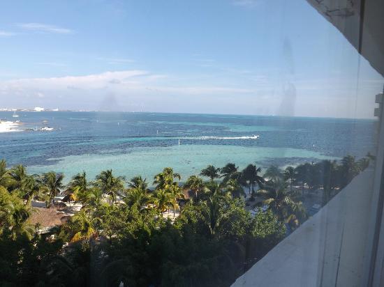 Oasis Palm: vista