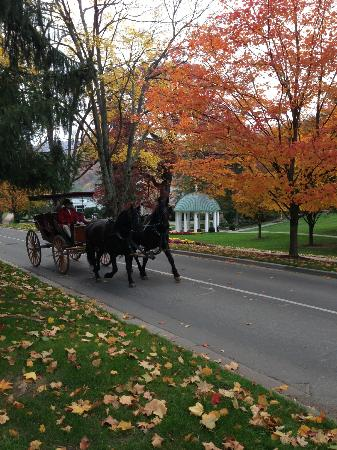 The Greenbrier: A horse carriage ride on a beautiful fall day!